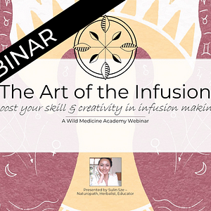 Art of the Infusion
