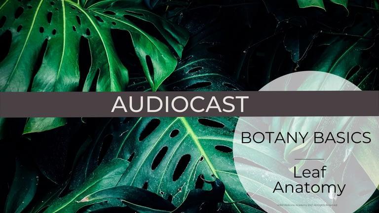 WMA Audiocast Leaf Anatomy